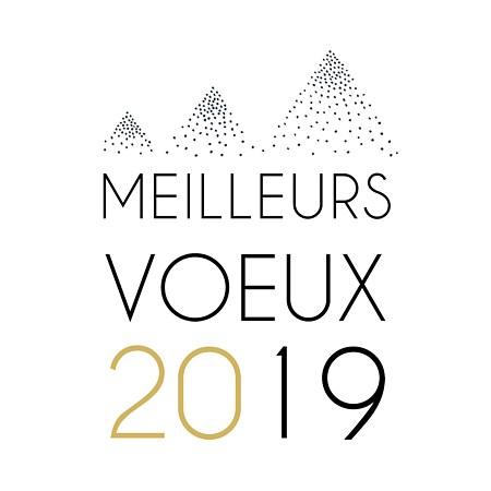 Cérémonie des vœux de la municipalité à la population 2019 !